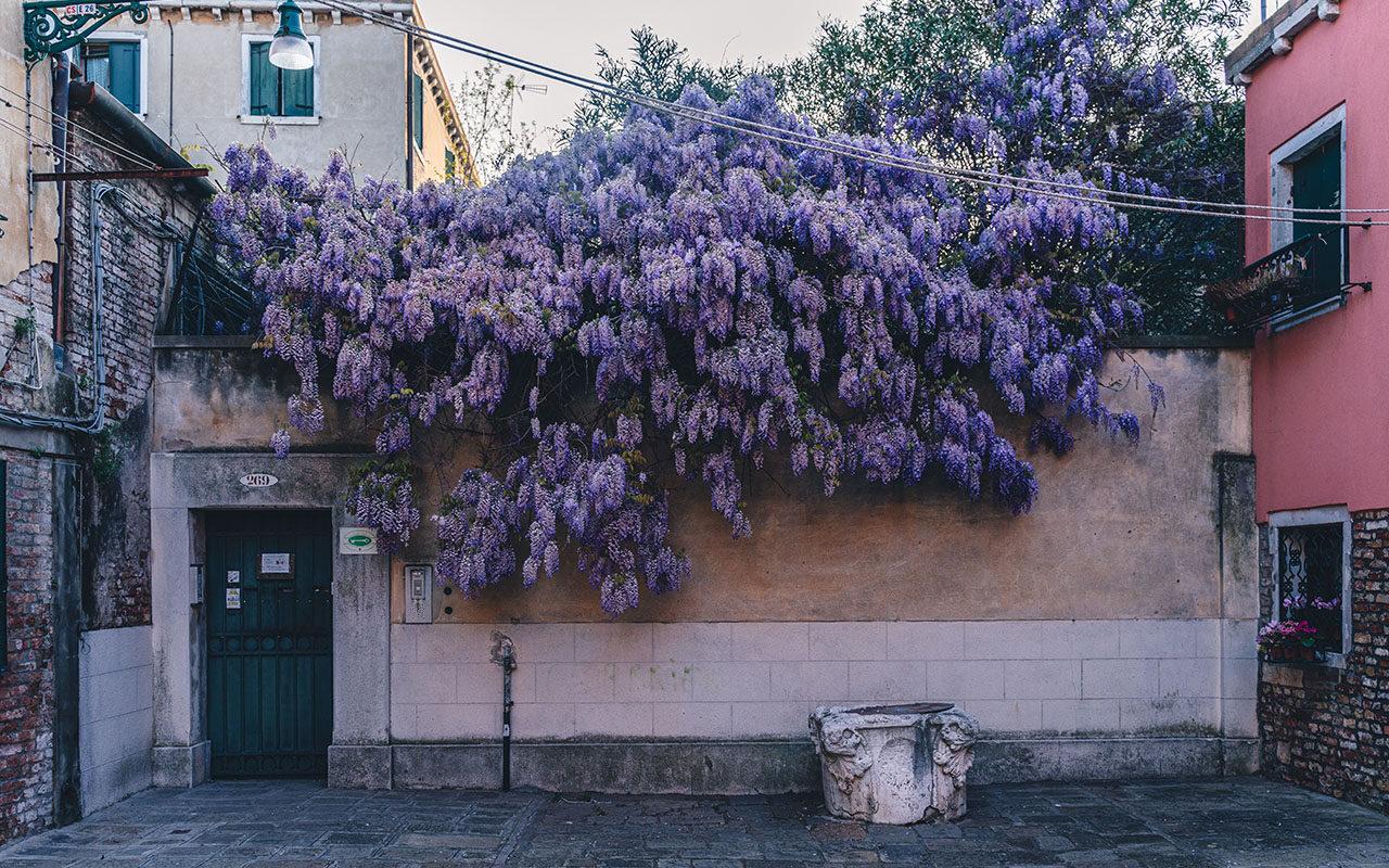 Riscrivere il futuro di Venezia, tra visioni e creazioni